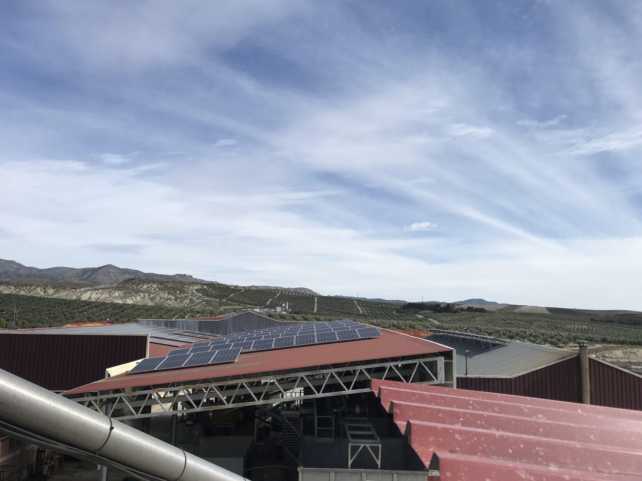 Instalación fotovoltaica de autoconsumo en Almazara