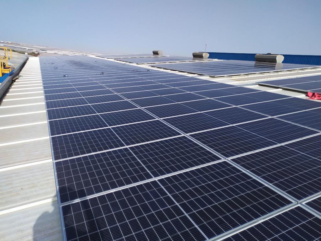 Instalación fotovoltaica de autoconsumo en Cooperativa frutícola